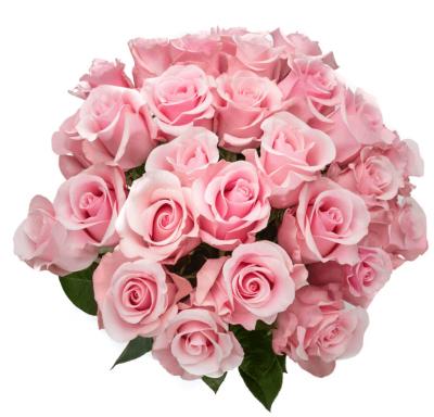 Букет из 25 шт нежно розовых роз