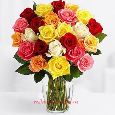 Букет из 25 шт разноцветных роз