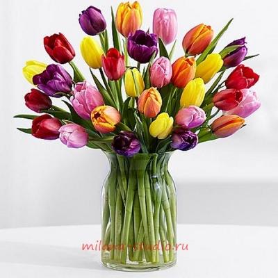 Букет из 25 шт тюльпанов ассорти
